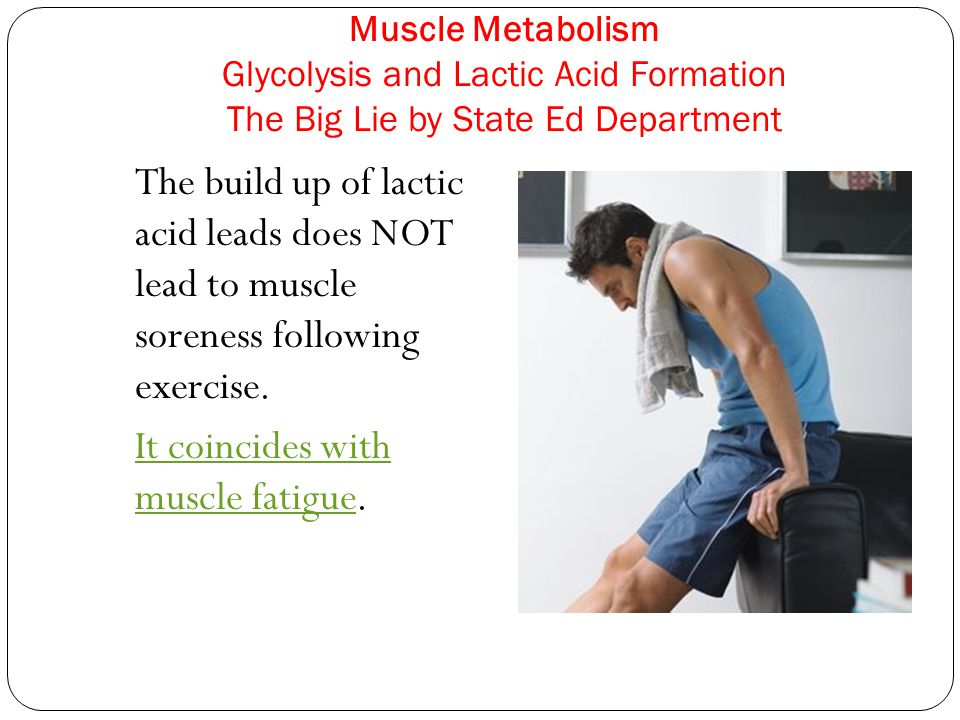 Muscle Metabolism Glycolysis and Lactic Acid Formation The Big Lie by State Ed Department The build up of lactic acid leads does NOT lead to muscle so