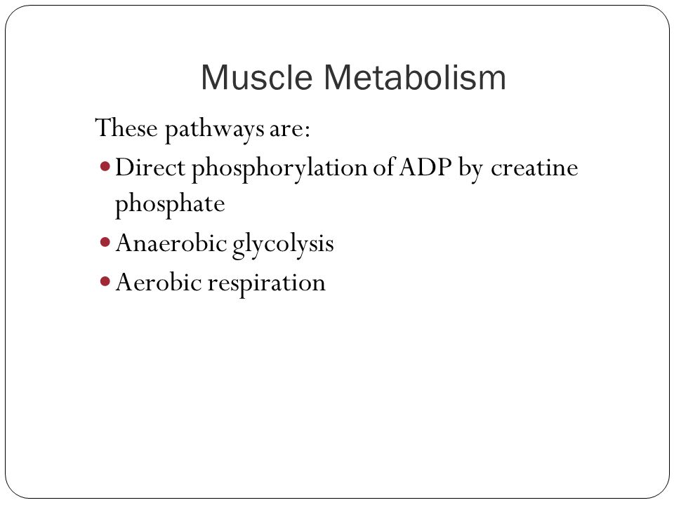 Muscle Metabolism These pathways are: Direct phosphorylation of ADP by creatine phosphate Anaerobic glycolysis Aerobic respiration