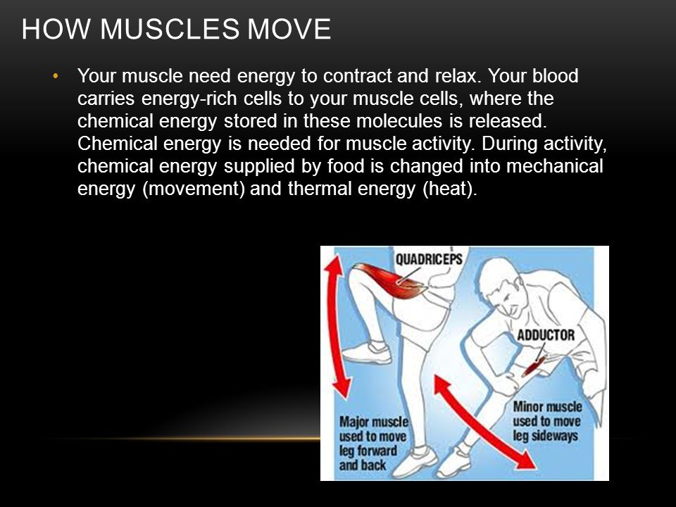 HOW MUSCLES MOVE Your muscle need energy to contract and relax. Your blood carries energy-rich cells to your muscle cells, where the chemical energy s