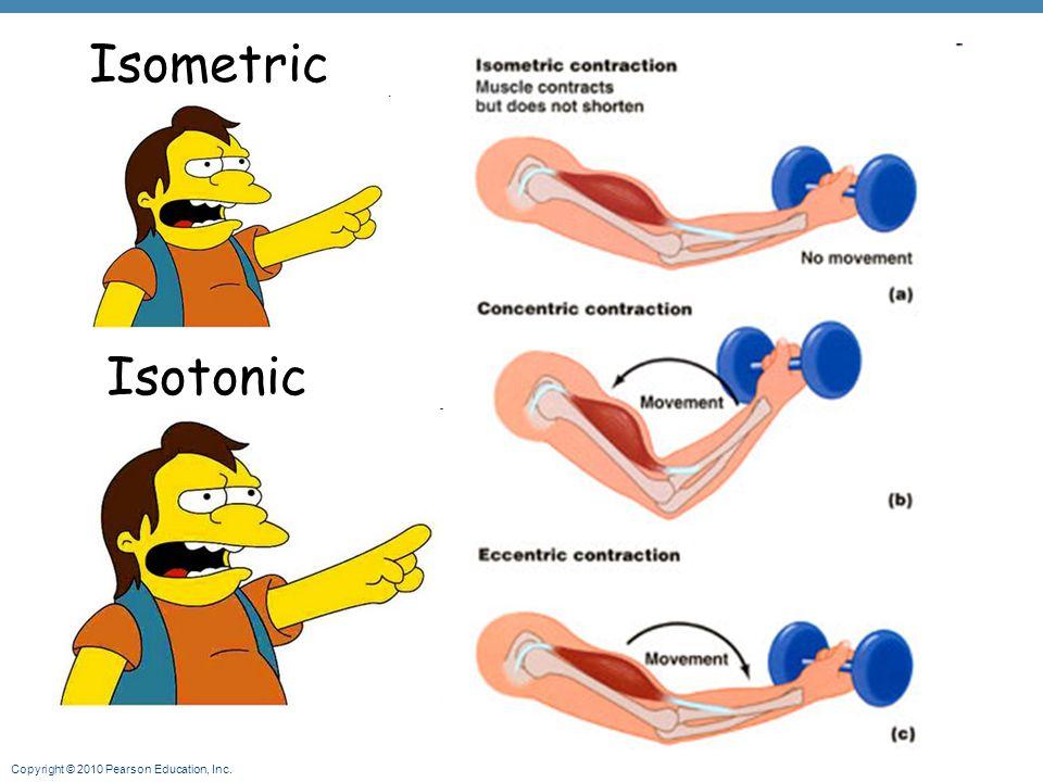 Copyright © 2010 Pearson Education, Inc. Isometric Isotonic