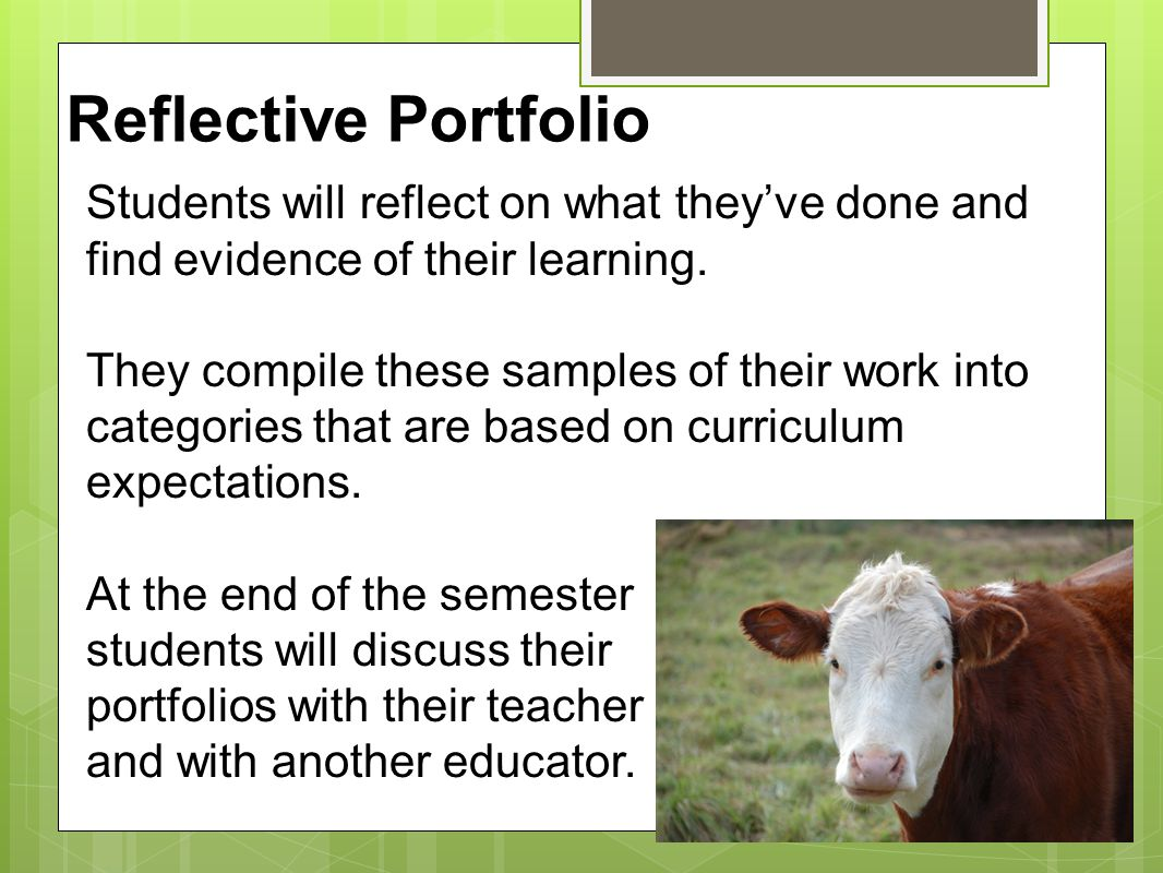 Reflective Portfolio Students will reflect on what they've done and find evidence of their learning.