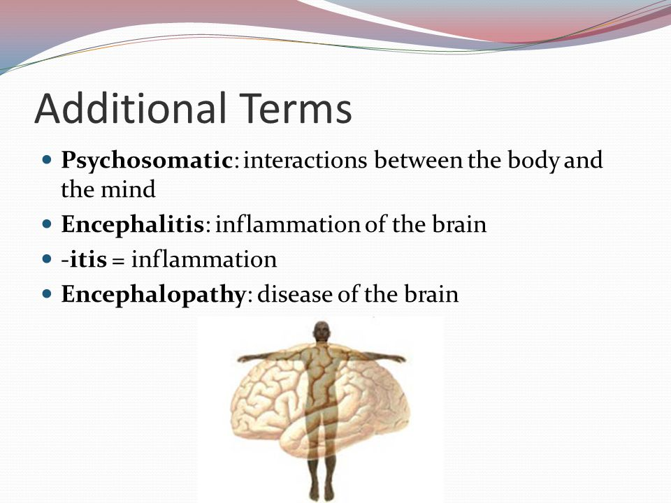 Additional Terms Psychosomatic: interactions between the body and the mind Encephalitis: inflammation of the brain -itis = inflammation Encephalopathy: disease of the brain