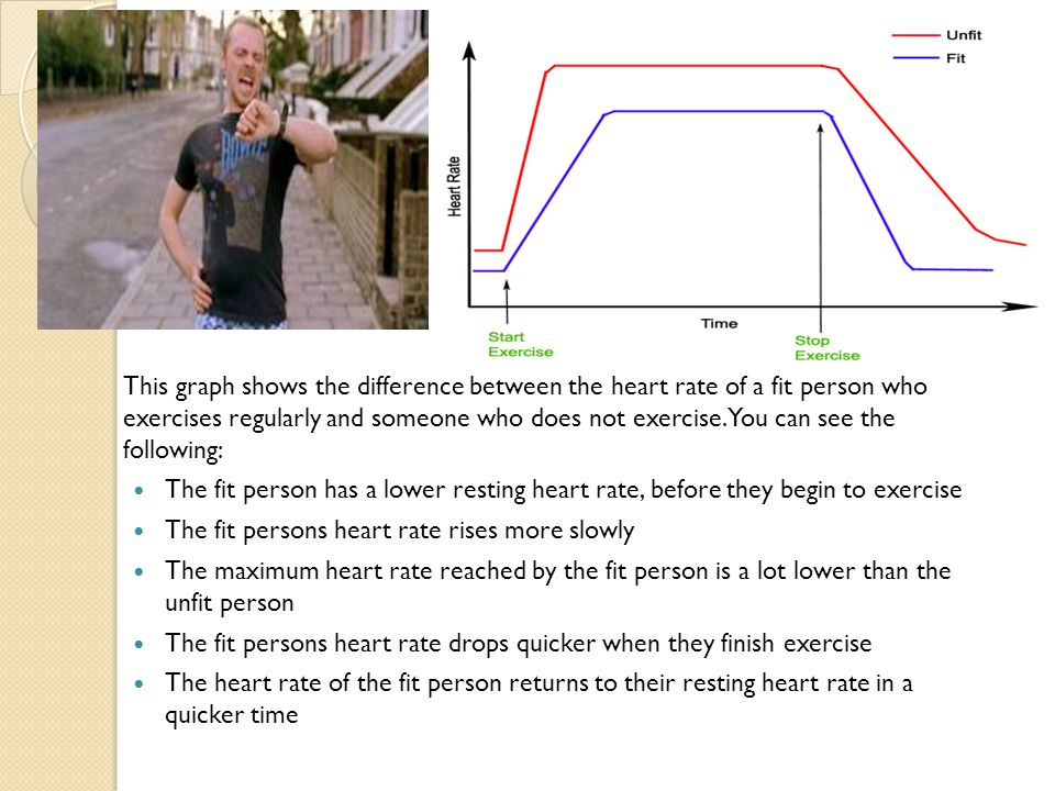 This graph shows the difference between the heart rate of a fit person who exercises regularly and someone who does not exercise.