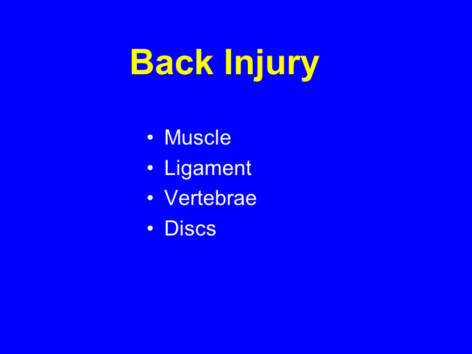 Back Injury Muscle Ligament Vertebrae Discs