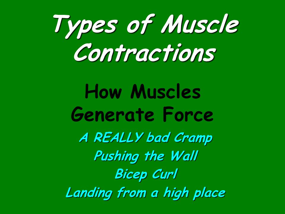 Types of Muscle Contractions A REALLY bad Cramp Pushing the Wall Bicep Curl Landing from a high place How Muscles Generate Force