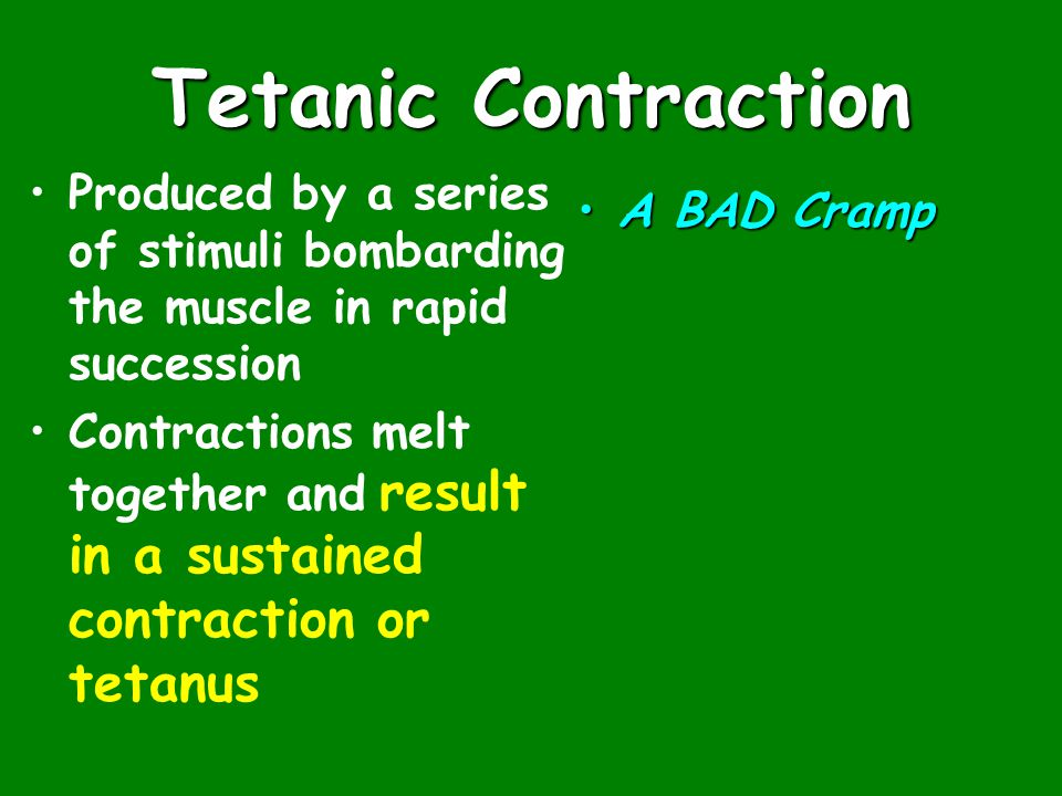 Tetanic Contraction Produced by a series of stimuli bombarding the muscle in rapid succession Contractions melt together and result in a sustained contraction or tetanus A BAD Cramp