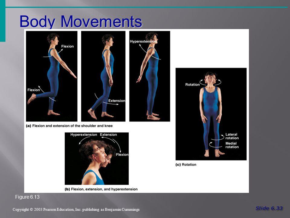Body Movements Copyright © 2003 Pearson Education, Inc. publishing as Benjamin Cummings Figure 6.13