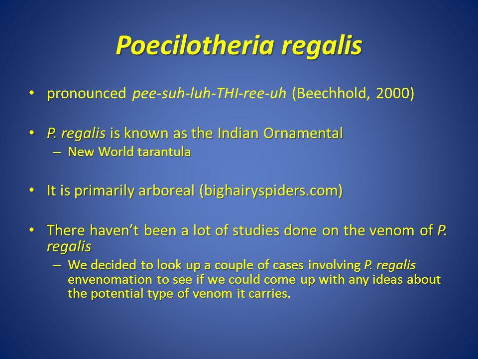 Poecilotheria regalis pronounced pee-suh-luh-THI-ree-uh (Beechhold, 2000) P.