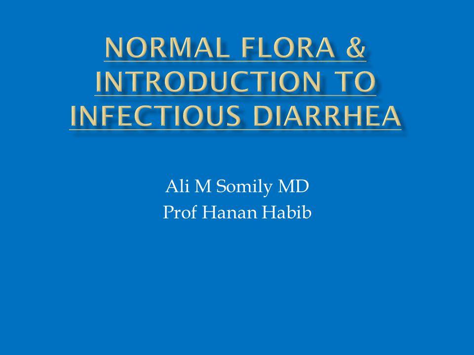 Ali M Somily MD Prof Hanan Habib