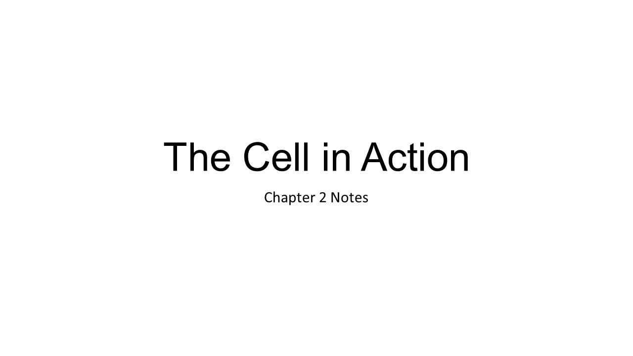 The Cell in Action Chapter 2 Notes