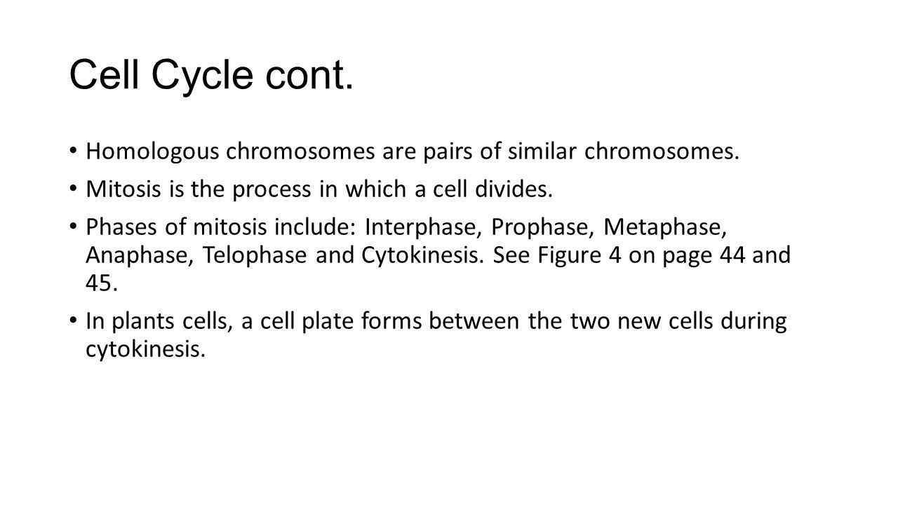 Cell Cycle cont. Homologous chromosomes are pairs of similar chromosomes. Mitosis is the process in which a cell divides. Phases of mitosis include: I