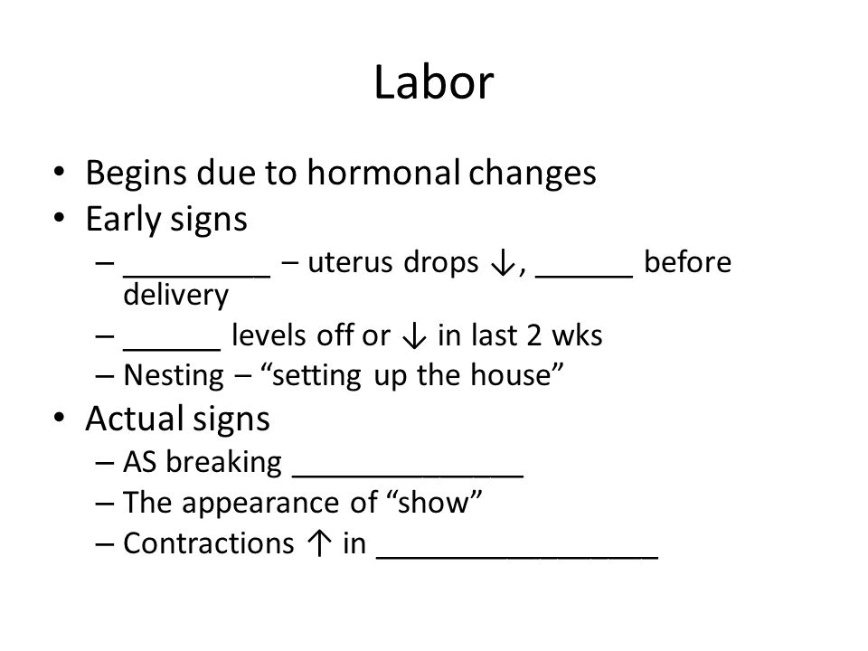 Labor Begins due to hormonal changes Early signs – _________ – uterus drops ↓, ______ before delivery – ______ levels off or ↓ in last 2 wks – Nesting – setting up the house Actual signs – AS breaking ______________ – The appearance of show – Contractions ↑ in _________________