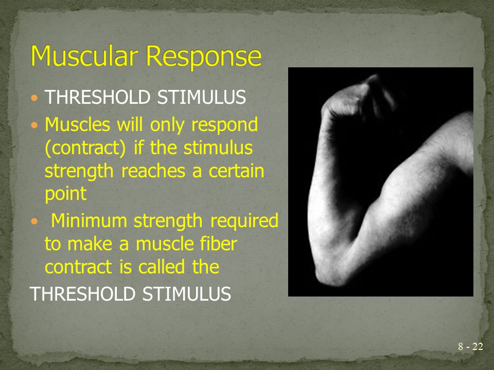 THRESHOLD STIMULUS Muscles will only respond (contract) if the stimulus strength reaches a certain point Minimum strength required to make a muscle fi
