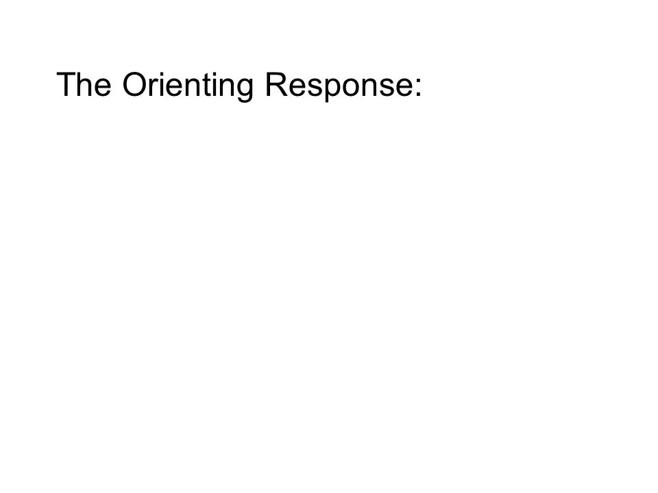 The Orienting Response: