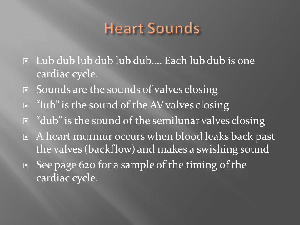 """ Lub dub lub dub lub dub…. Each lub dub is one cardiac cycle.  Sounds are the sounds of valves closing  """"lub"""" is the sound of the AV valves closing"""