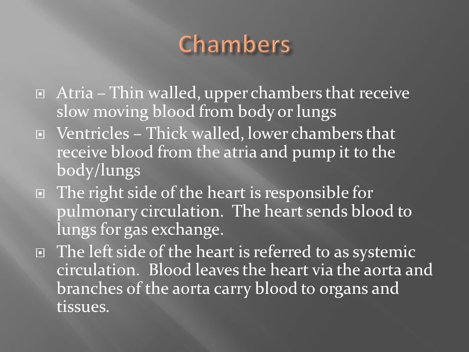 Atria – Thin walled, upper chambers that receive slow moving blood from body or lungs  Ventricles – Thick walled, lower chambers that receive blood