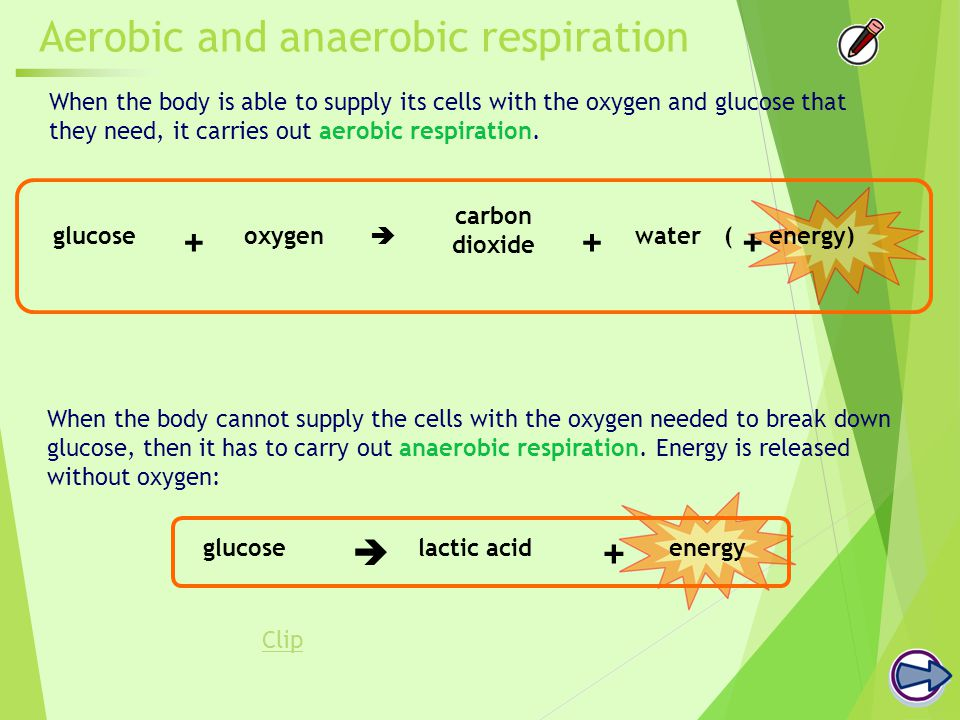 Aerobic and anaerobic respiration When the body is able to supply its cells with the oxygen and glucose that they need, it carries out aerobic respiration.