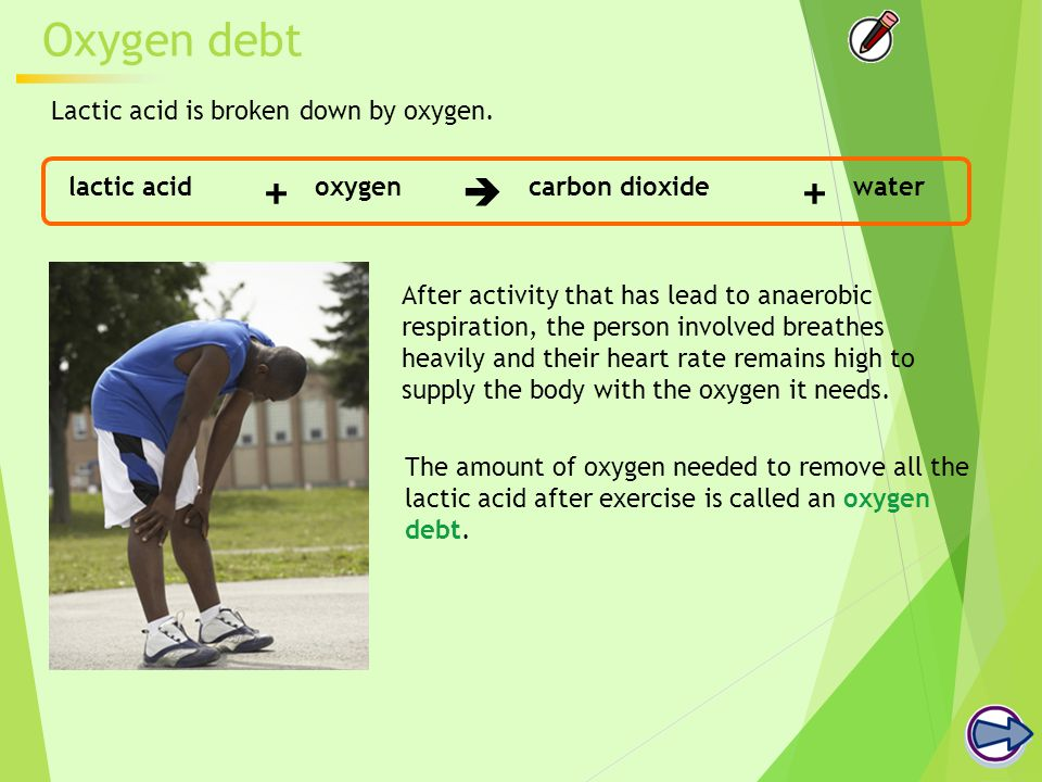 Oxygen debt The amount of oxygen needed to remove all the lactic acid after exercise is called an oxygen debt.