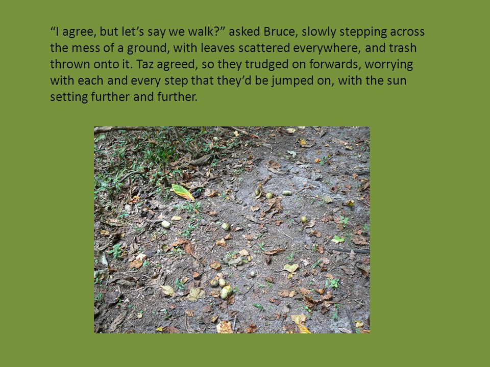 I agree, but let's say we walk? asked Bruce, slowly stepping across the mess of a ground, with leaves scattered everywhere, and trash thrown onto it.