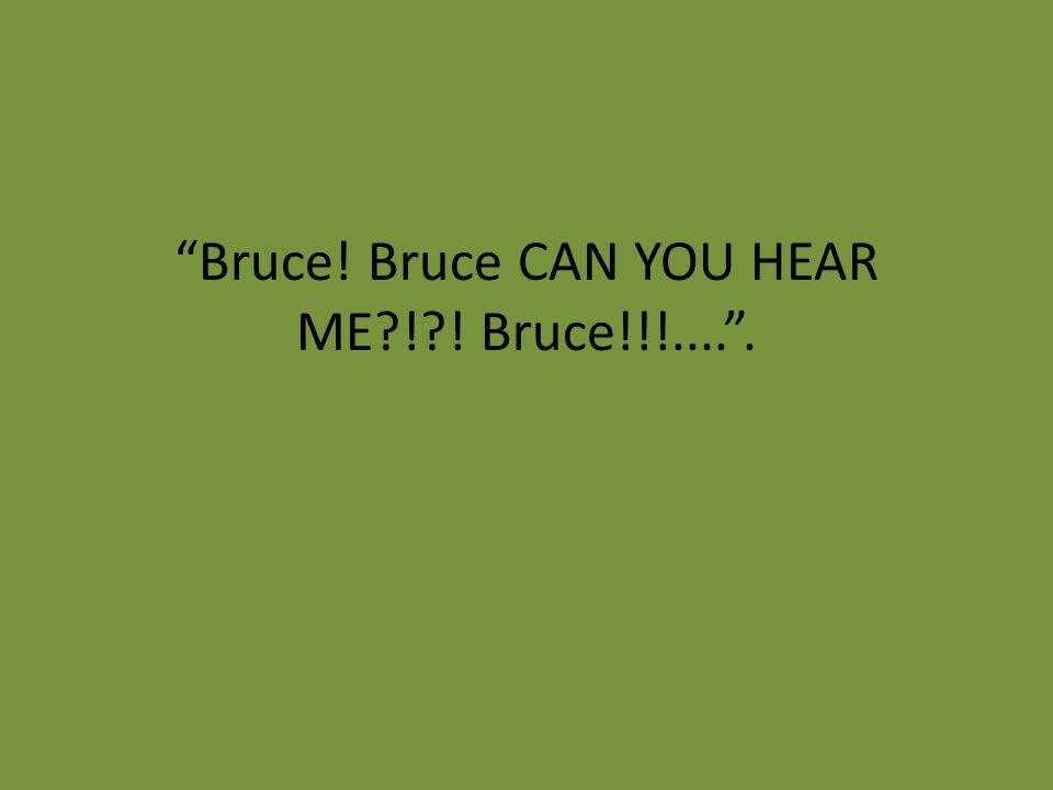 Bruce! Bruce CAN YOU HEAR ME ! ! Bruce!!!.... .