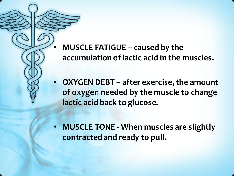 MUSCLE FATIGUE – caused by the accumulation of lactic acid in the muscles. OXYGEN DEBT – after exercise, the amount of oxygen needed by the muscle to