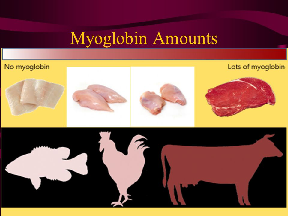 Myoglobin This protein is also the main reason that the red meat turns darker while you're cooking it.