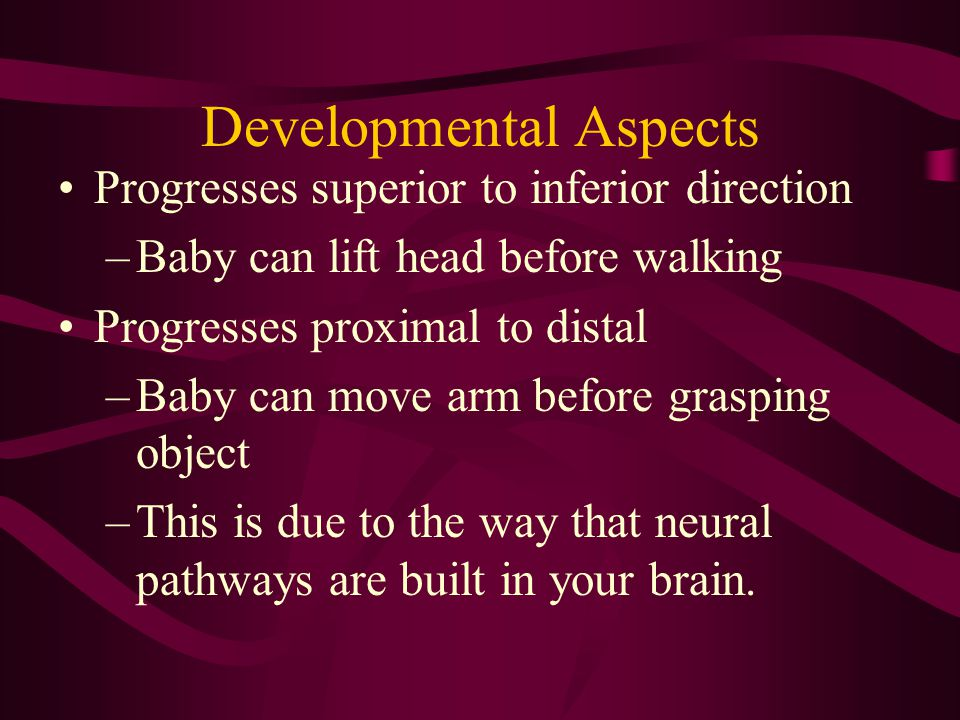 Developmental Aspects Progresses superior to inferior direction –Baby can lift head before walking Progresses proximal to distal –Baby can move arm be