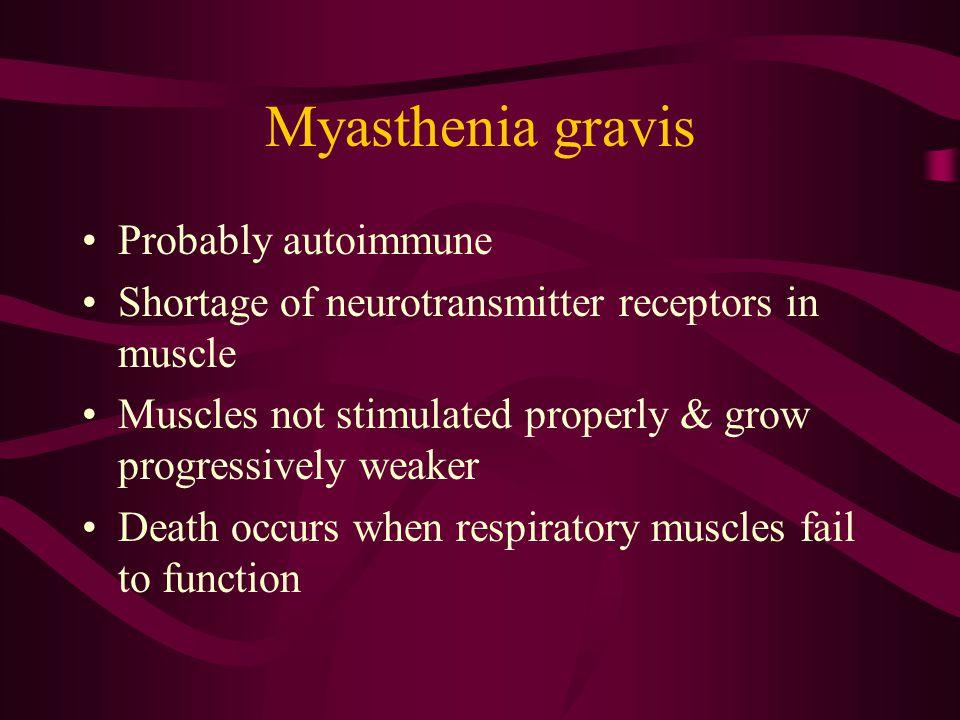 Myasthenia gravis Probably autoimmune Shortage of neurotransmitter receptors in muscle Muscles not stimulated properly & grow progressively weaker Dea