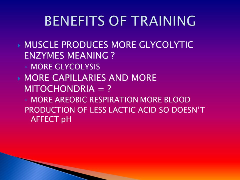 MUSCLE PRODUCES MORE GLYCOLYTIC ENZYMES MEANING .