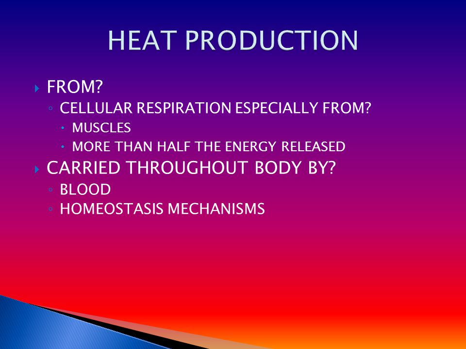  FROM. ◦ CELLULAR RESPIRATION ESPECIALLY FROM.