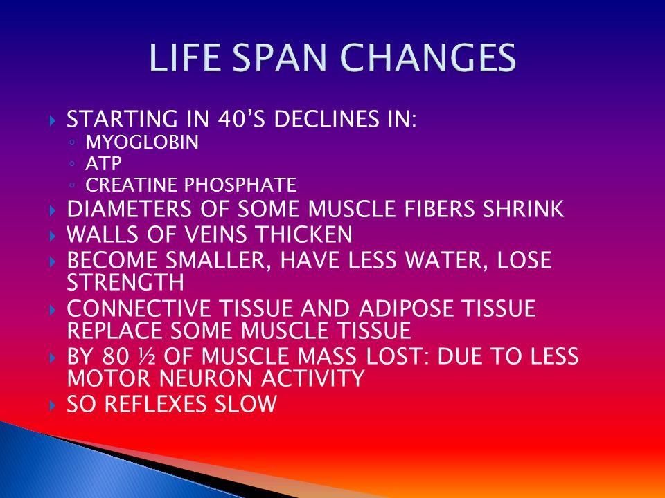 STARTING IN 40'S DECLINES IN: ◦ MYOGLOBIN ◦ ATP ◦ CREATINE PHOSPHATE  DIAMETERS OF SOME MUSCLE FIBERS SHRINK  WALLS OF VEINS THICKEN  BECOME SMAL