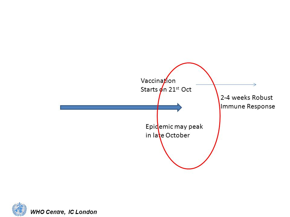 Epidemic may peak in late October Vaccination Starts on 21 st Oct 2-4 weeks Robust Immune Response