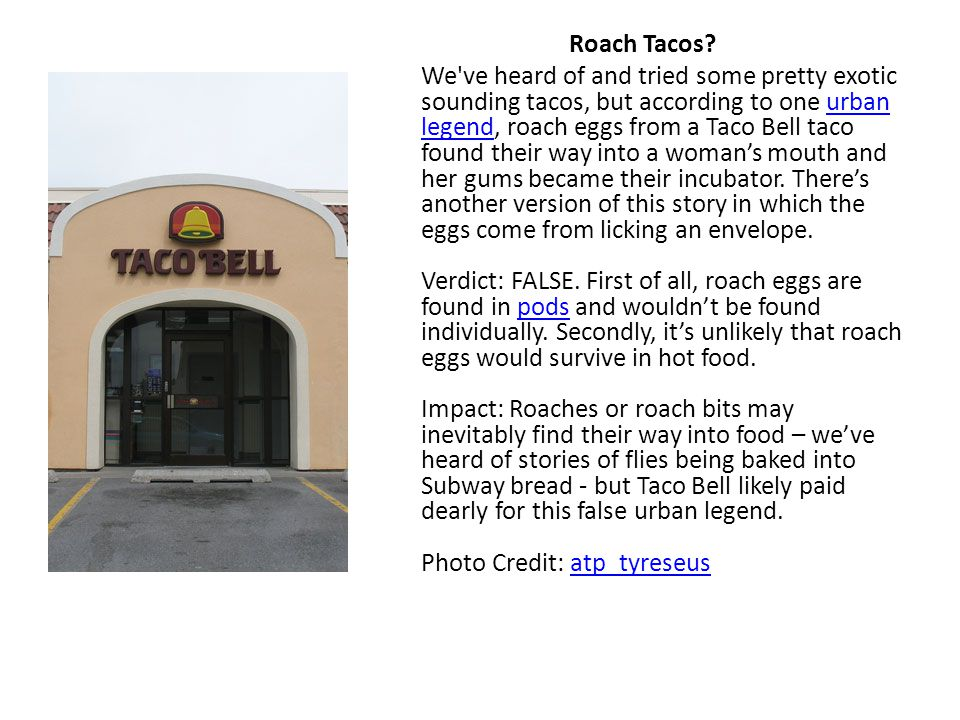 Roach Tacos? We've heard of and tried some pretty exotic sounding tacos, but according to one urban legend, roach eggs from a Taco Bell taco found the