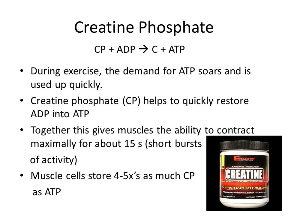 Creatine Phosphate During exercise, the demand for ATP soars and is used up quickly.