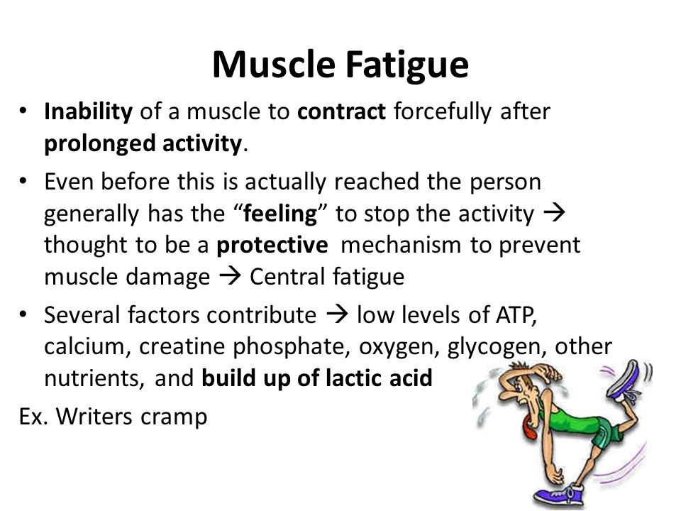 Muscle Fatigue Inability of a muscle to contract forcefully after prolonged activity.