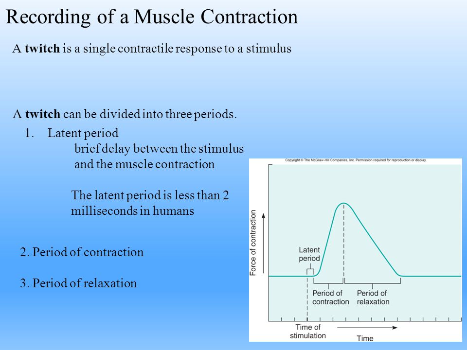 Recording of a Muscle Contraction 2. Period of contraction 3. Period of relaxation A twitch is a single contractile response to a stimulus A twitch ca
