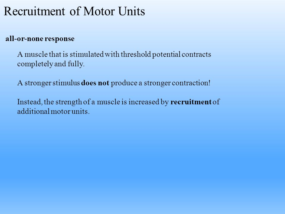 all-or-none response A muscle that is stimulated with threshold potential contracts completely and fully. A stronger stimulus does not produce a stron