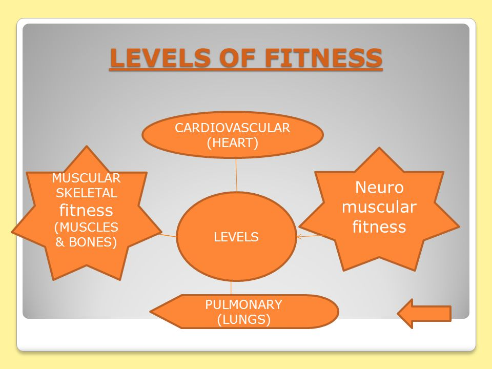 Fitness is a general state of wellbeing. HOW FIT ARE YOU.