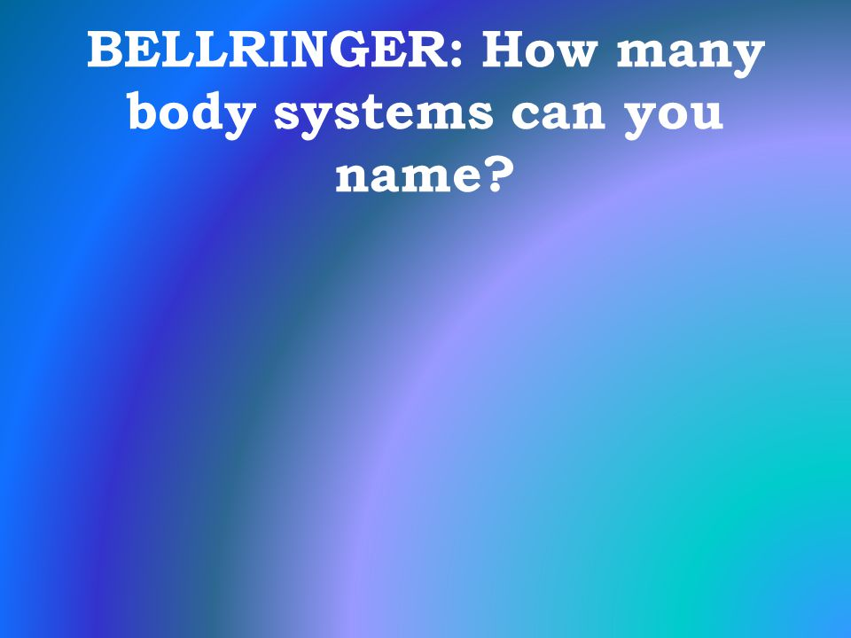 BELLRINGER: How many body systems can you name?