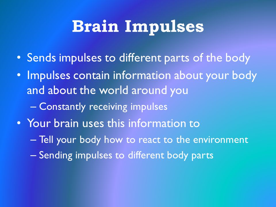 Brain Impulses Sends impulses to different parts of the body Impulses contain information about your body and about the world around you – Constantly