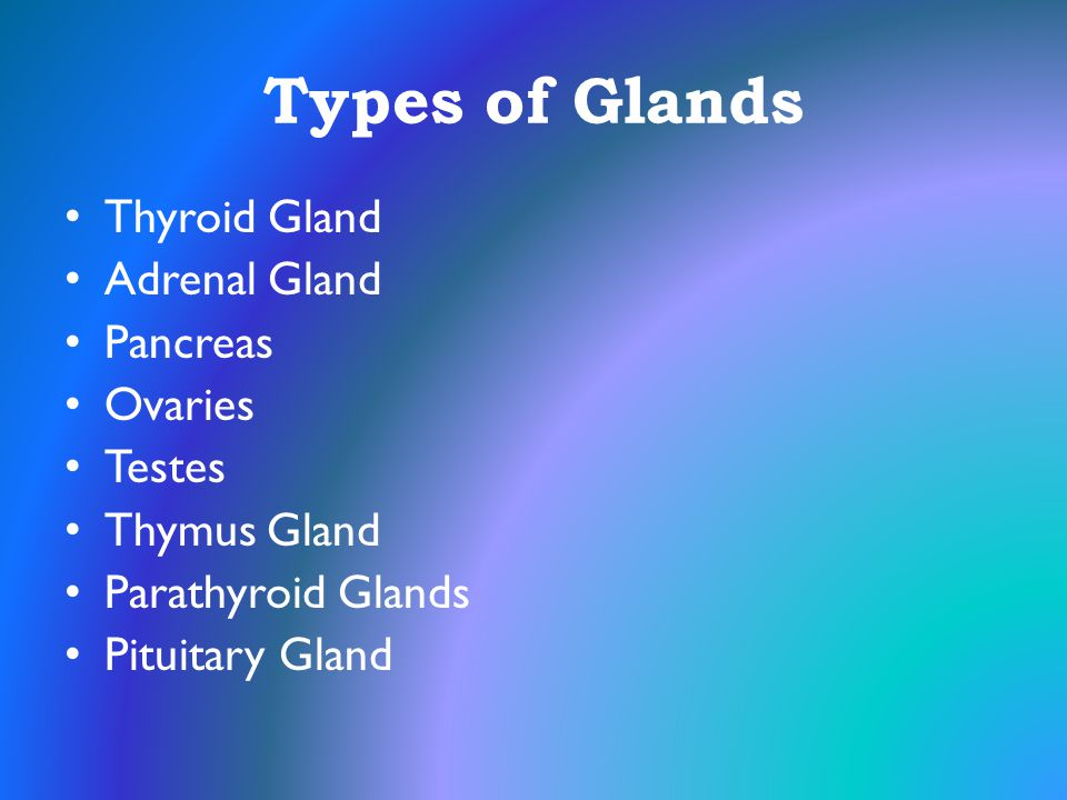 Types of Glands Thyroid Gland Adrenal Gland Pancreas Ovaries Testes Thymus Gland Parathyroid Glands Pituitary Gland