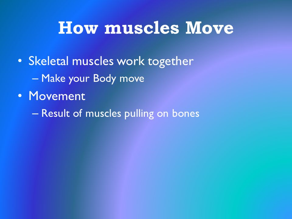 How muscles Move Skeletal muscles work together – Make your Body move Movement – Result of muscles pulling on bones
