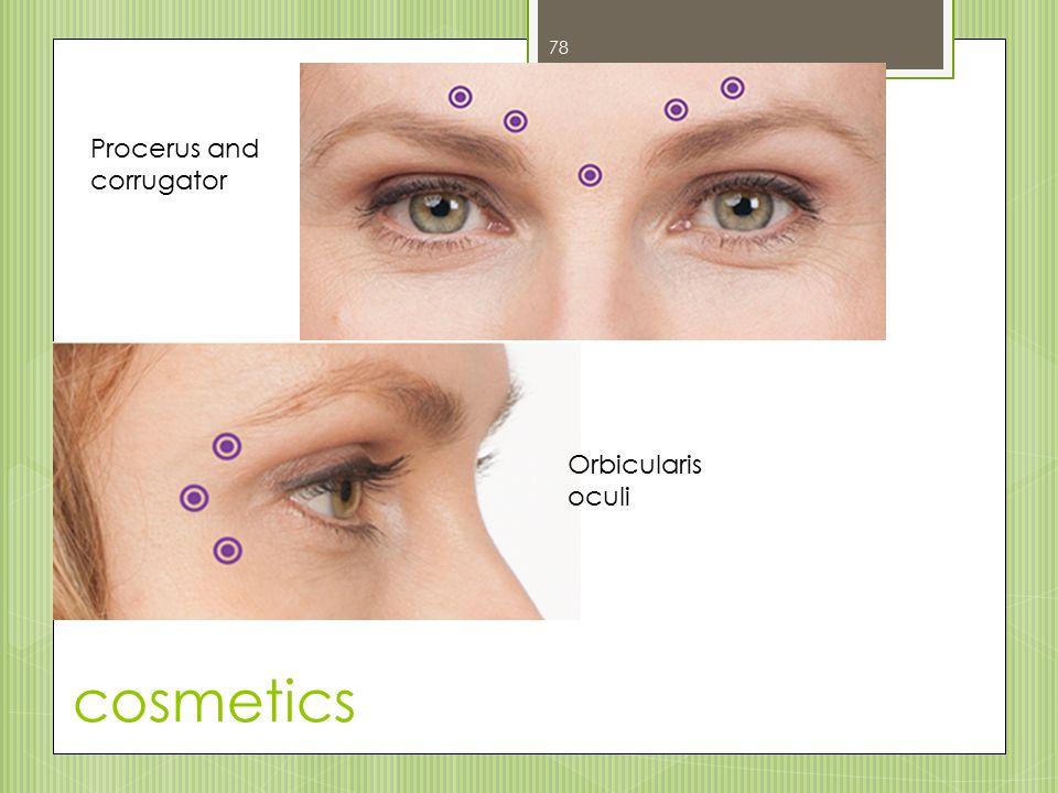cosmetics 78 Procerus and corrugator Orbicularis oculi