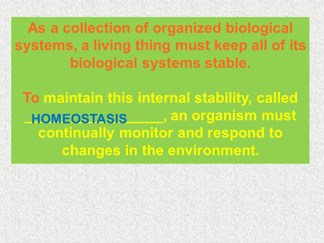 Basic Biochemical Processes Biochemical processes are the CHEMICAL processes that occur within an organism.