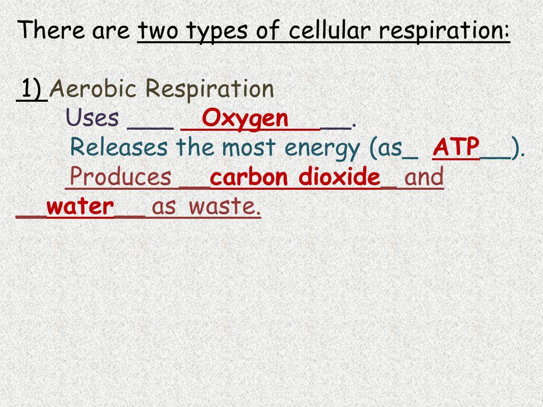 2) Anaerobic Respiration (aka Fermentation) Doesn't need ____oxygen_____.