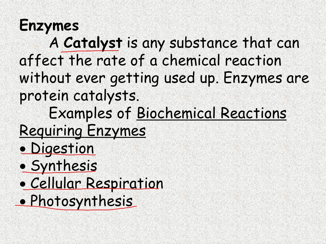 Enzyme activity is critically dependent on shape.