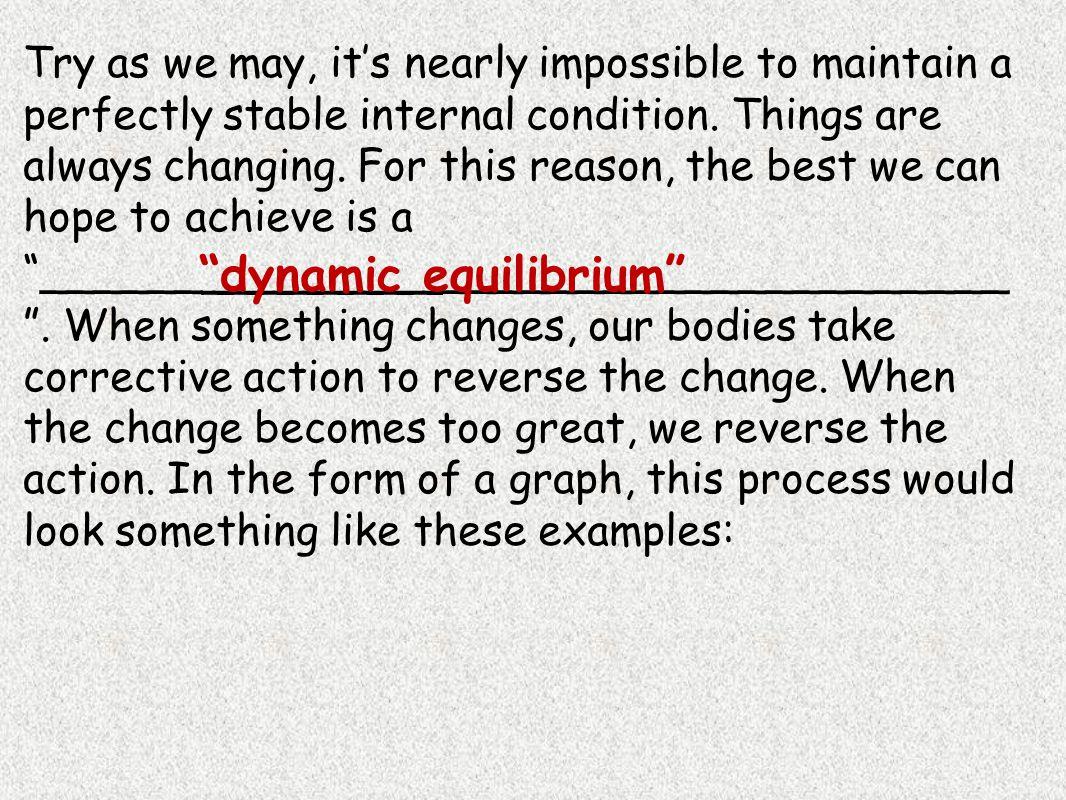 Body Temperature and Dynamic Equilibrium