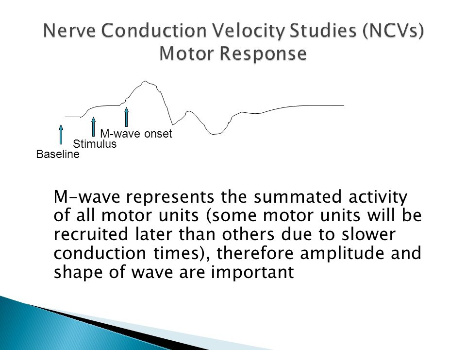 M-wave represents the summated activity of all motor units (some motor units will be recruited later than others due to slower conduction times), ther