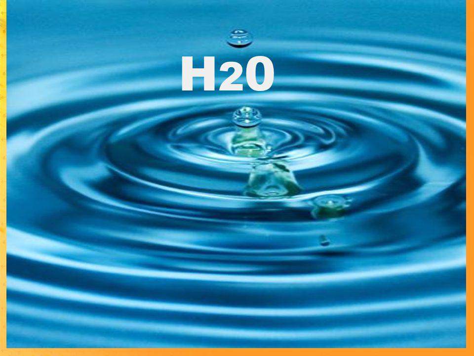 H20H20