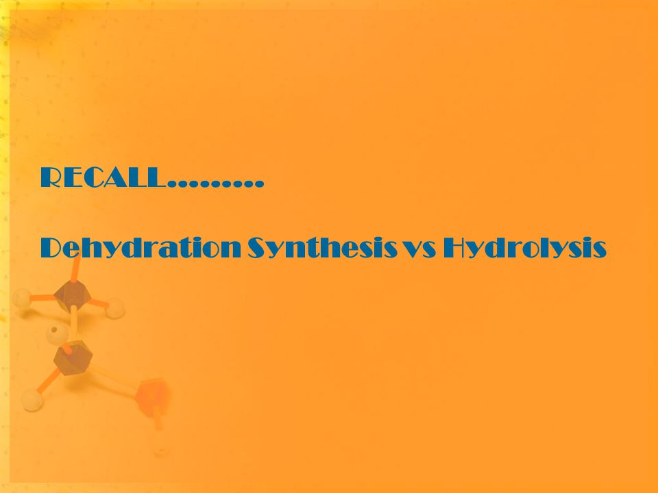 RECALL……… Dehydration Synthesis vs Hydrolysis